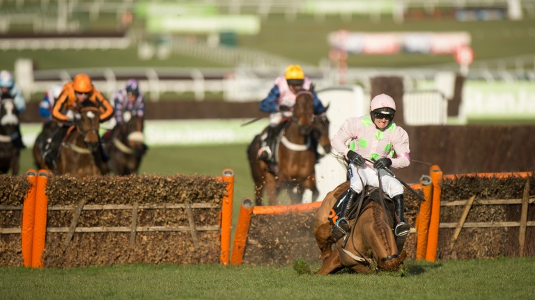 The £50 million fall: Annie Power's exit at the last in the mares' hurdle saved bookmakers a fortune – she was the last of four Willie Mullins favourites in an accumulator on the opening day following victories for Douvan, Un De Sceaux and Faugheen