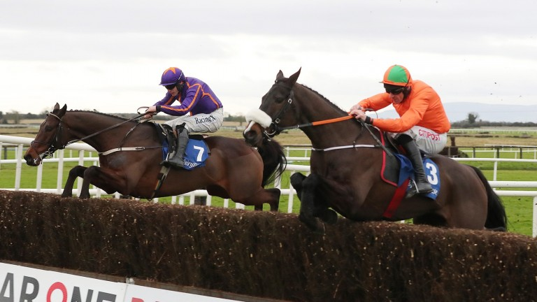 De Plotting Shed (right): his chase rating underestimates him