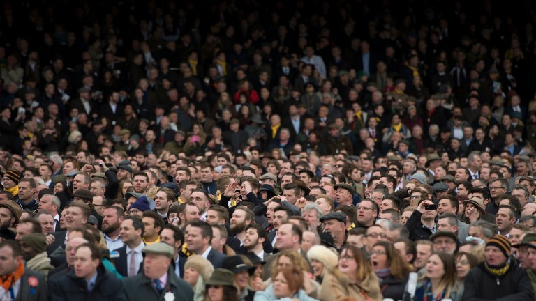 Racegoers react as Cue Card falls three out in the 2016 Gold Cup, losing his chance to scoop the Jockey Club £1 million Triple Crown bonus following victories in the Betfair Chase and King George