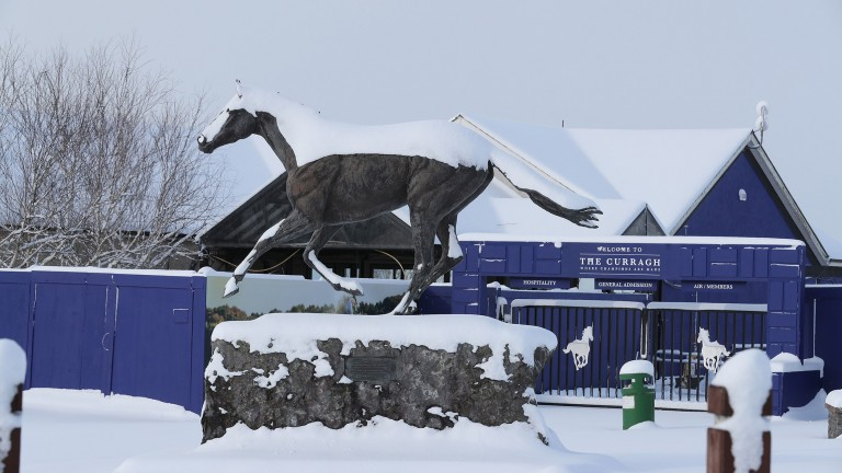 The Curragh: was hit with eight inches of snow