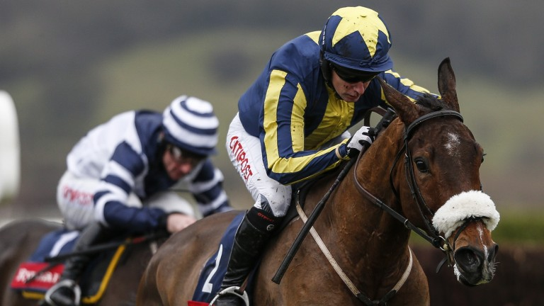 Kalondra: fancied by Neil Mulholland for the Close Brothers Novices' Handicap Chase