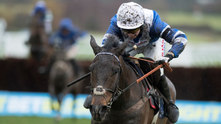 Frodon: can win despite carrying topweight