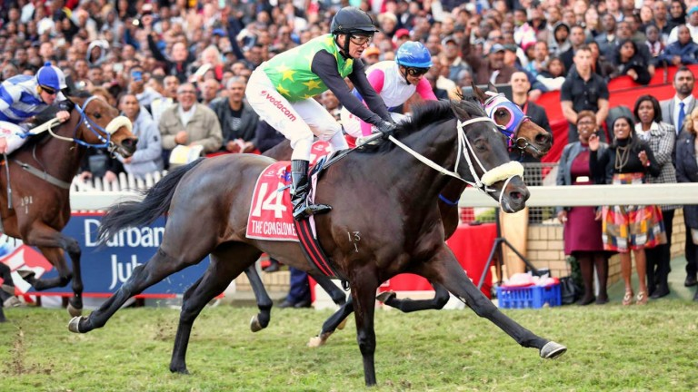 The Conglomerate: one of the star South African graduates from the Premier Sale