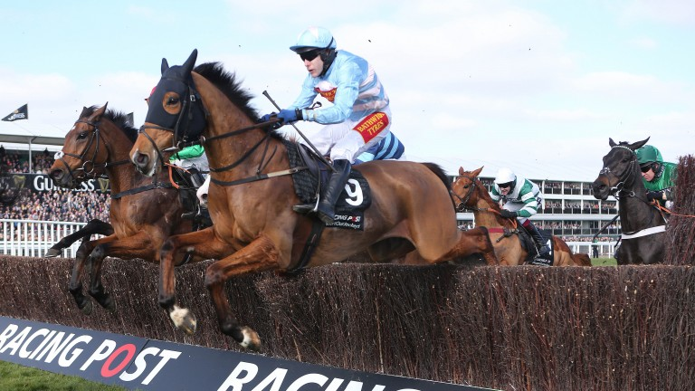 Western Warhorse was a 33-1 shot when winning the 2014 Racing Post Arkle