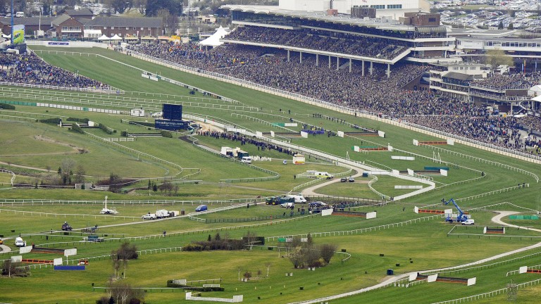 Cheltenham: an air ambulance will be on site for all four days