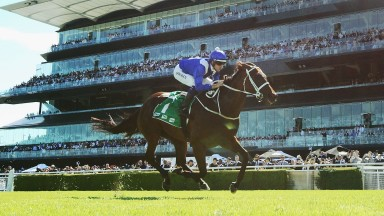 Winx chasing a 17th Group 1 victory on Saturday
