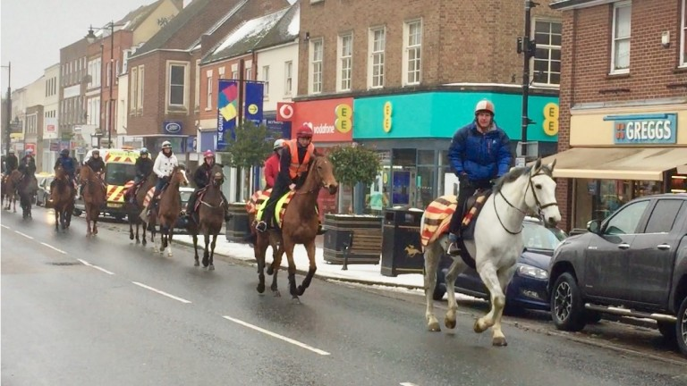 Michael Bell on his hack Miller leads Big Orange and the rest of the Fitzroy House team on Newmarket High Street.