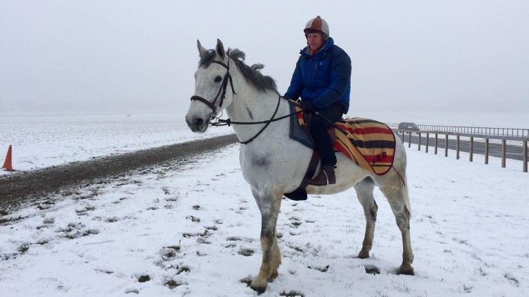 Michael Bell and his hack Miller at the top of Warren Hill on Saturday morning