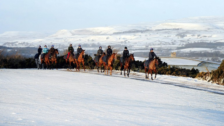 Racehorses make their way along snow covered roads to the gallops on Middleham Moor near Leyburn,
