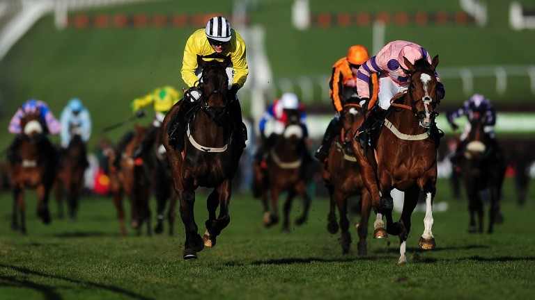 Glens Melody was the lucky recipient of Annie Power's famous fall