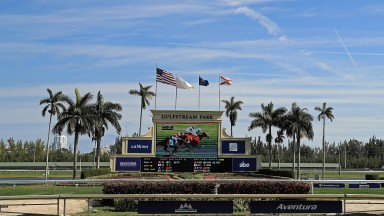 Gulfstream Park : track hosted some classy action on Saturday