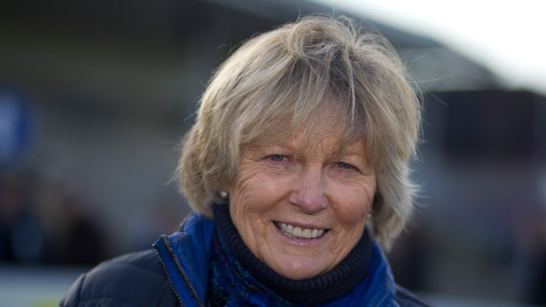 Jessica Harrington: trainer of Rovetta
