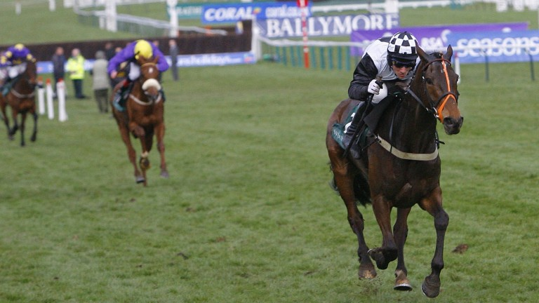 Dunguib: an impressive winner of the 2009 Champion Bumper under O'Connell
