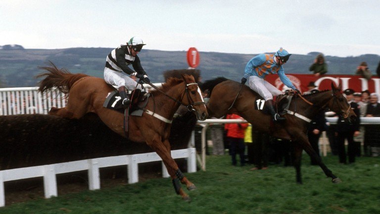 Norton's Coin and Graham McCourt en route to their 100-1 Gold Cup victory