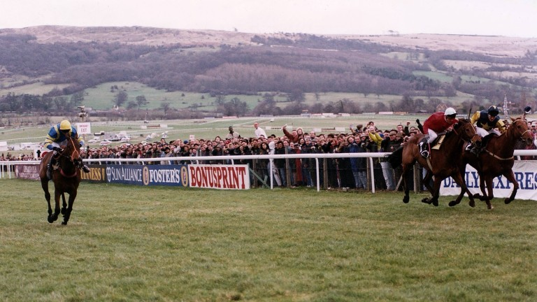 Cool Ground (right) wins the 1992 Gold Cup in a driving finish from The Fellow and Docklands Express