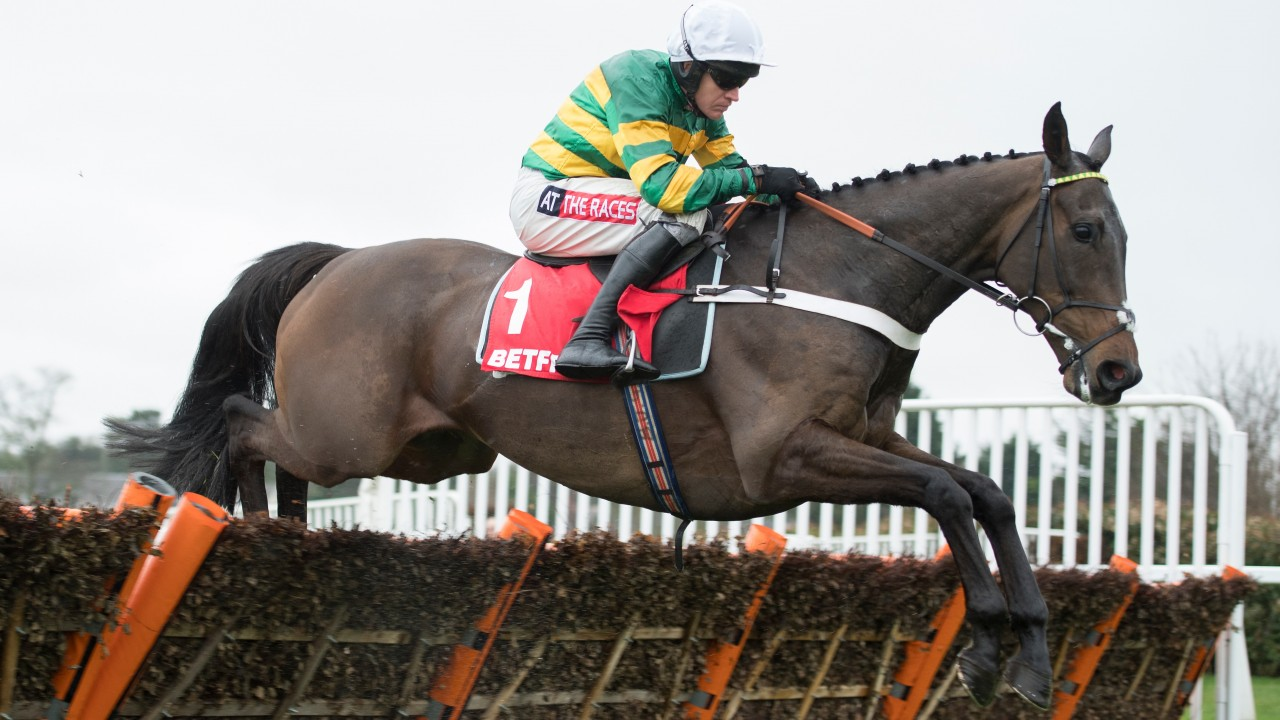 Grandouet out of champion hurdle betting profitable sports betting