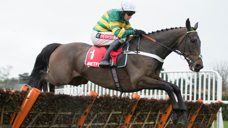 Barry Geraghty on Buveur D'Air: one of next week's bankers