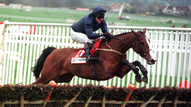 French Ballerina and Graham Bradley jumping the last to win the Supreme Novices' Hurdle at the 1998 Cheltenham Festival