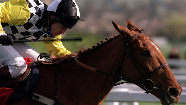 Monsignor: twice a Cheltenham Festival winner before his career was cut short by injury
