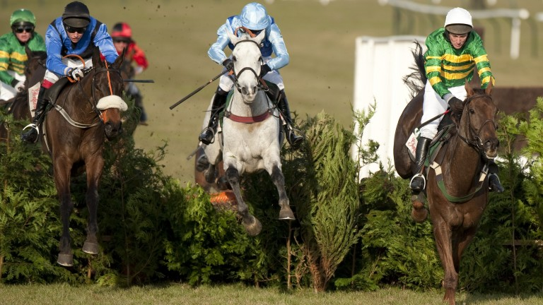 A New Story and Adrian Heskin (left) jump the last upsides Lacdoudal and L'Ami in the 2010 Cross Country Chase at the Cheltenham Festival.