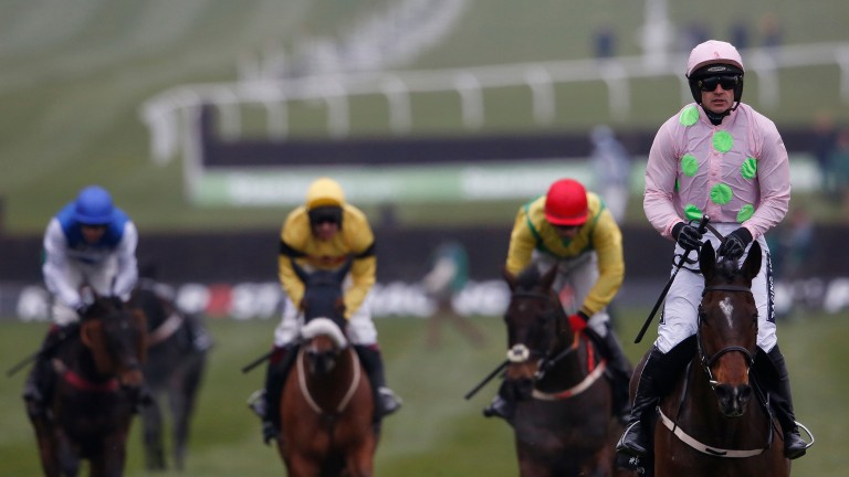 Douvan: likely to tackle the Ryanair Chase at Cheltenham