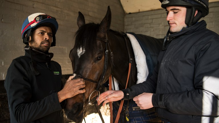 Groom Dastagir Hussain Mohammed and assistant trainer Toby Lawes with Champion Chase favourite Altior