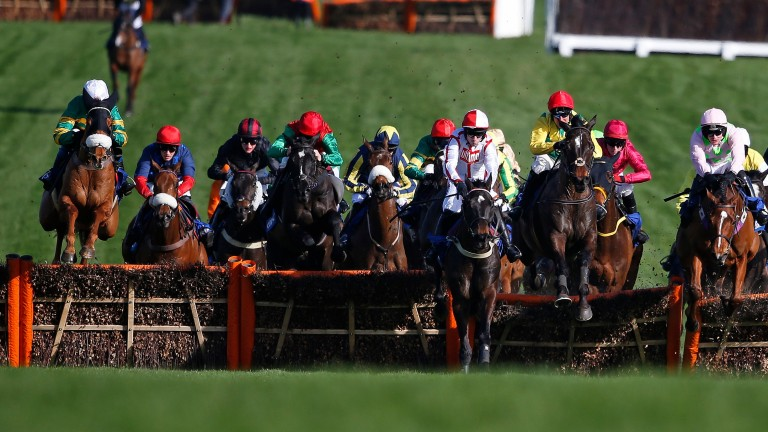 Trainers will require special dispensation to run horses over jumps without shoes on their hind hooves