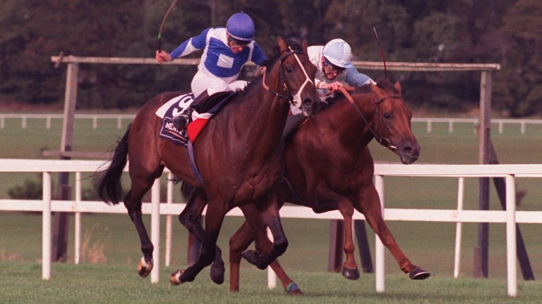 Dr Devious (far side) gets the better of old adversary St Jovite in the 1992 Irisih Champion Stakes