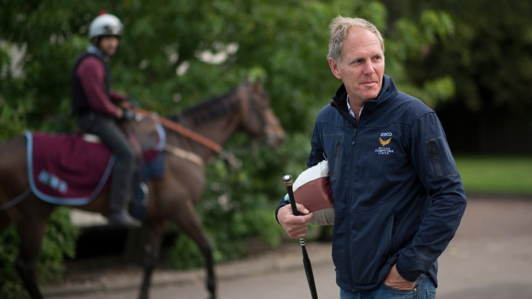 Michael Bell: trainer of India