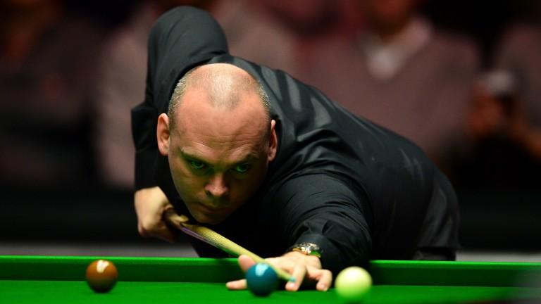 Stuart Bingham (above) was an easy winner against Andrew Higginson