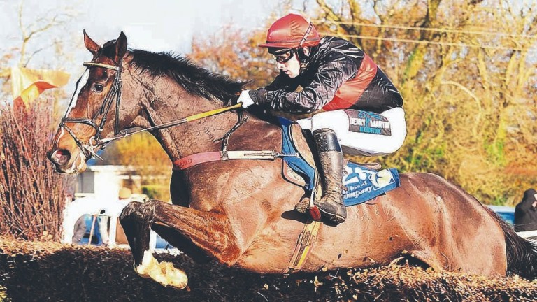 Queens Cave, seen here winning her point-to-point is expected to handle the testing conditions