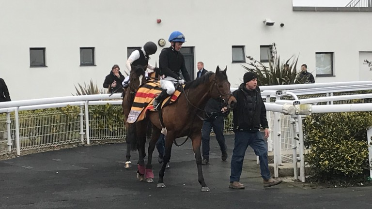 A couple of Aidan O'Brien's charges coming back in after working at Dundalk on Friday evening
