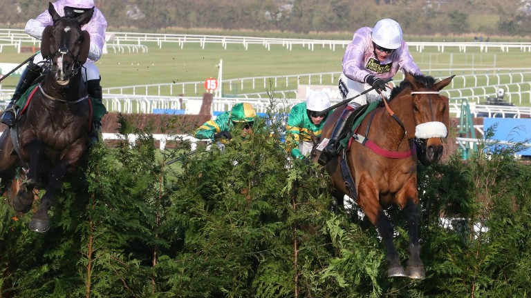 Any Currency: lost the 2016 Cross Country race after medication had failed to clear his system