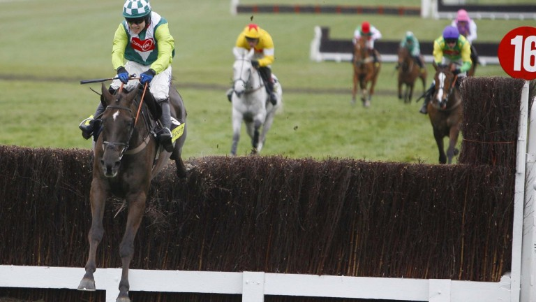 Denman and Sam Thomas power to victory in the 2008 Gold Cup