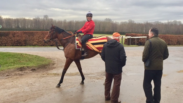 Hayley Turner on Fire Brigade chatting with the horse's owner Ed Ware (right) and Bill Gredley on Saturday