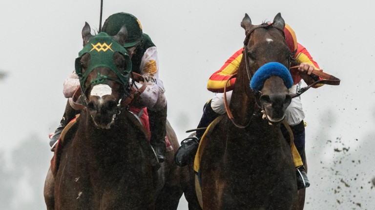 Bolt d'Oro, with Javier Castellano up, left, battle McKinzie and Mike Smith down the stretch and was declared the winner after McKinzie, who finished first, was disqualified, and placed second Saturday, March 10, 2018 at Santa Anita Park, Arcadia, CA.©Ben