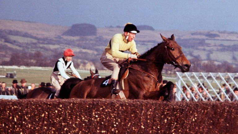 Arkle: Ralph hasn't been to Cheltenham for a while, but he remembers witnessing Himself's three Gold Cup victories