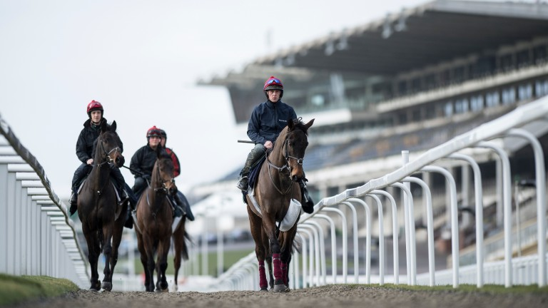 Cheltenham going is heavy, soft in places