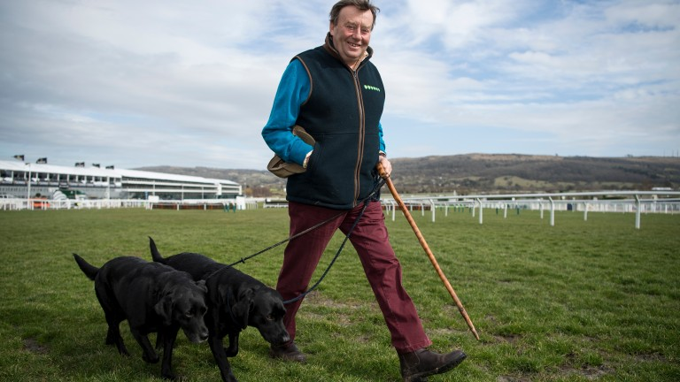 Inspecting conditions: Seven Barrows maestro Nicky Henderson walks the course with two trusted assistants