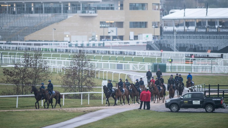 Ready for action: the deserted stands will be packed with the festival faithful when the Supreme Novices' field jumps off at 1.30 on Tuesday