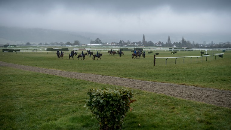 Cheltenham: more rain forecast Wednesday into Thursday