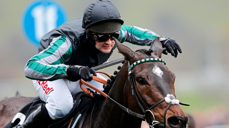 Altior heads a cast of big names in the Betway Queen Mother Champion Chase