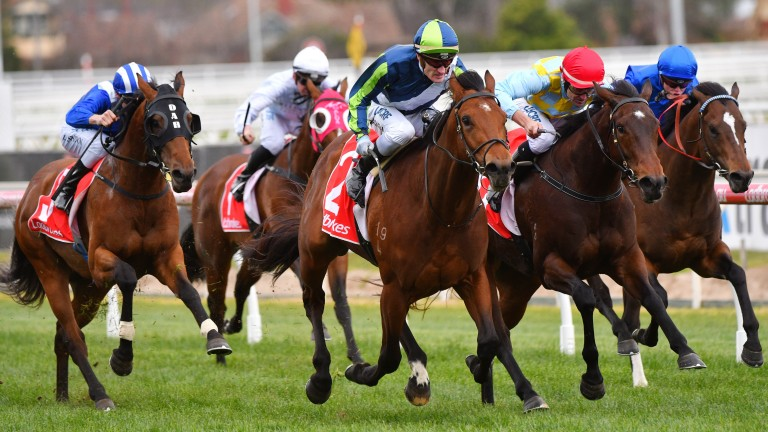 Royal Ascot-bound: Merchant Navy (centre), pictured here winning at Caulfield, is set to join Aidan O'Brien