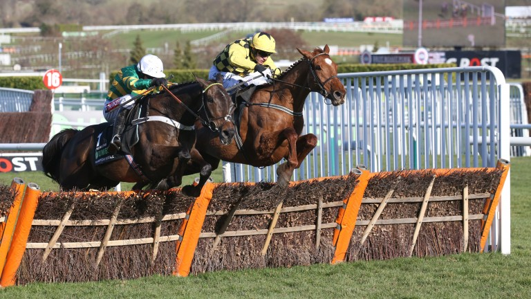 Buveur D'Air (left): jumps the last with Melon to land the Champion Hurdle
