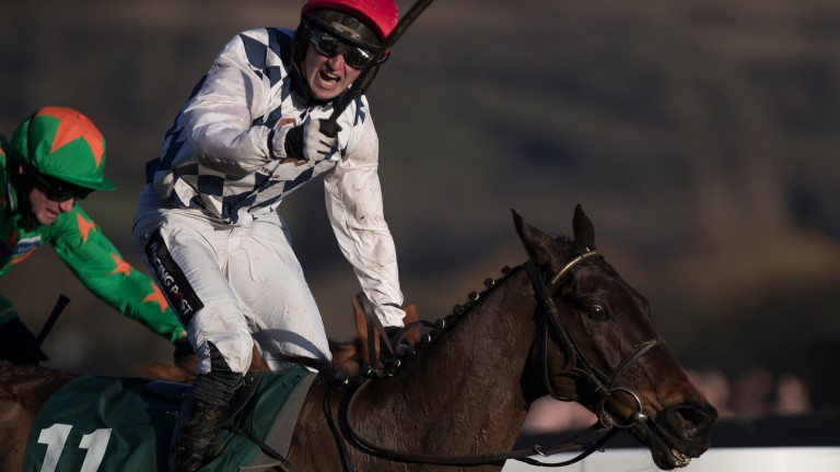 Patrick Mullins celebrates after Rathvinden's victory in the National Hunt Chase