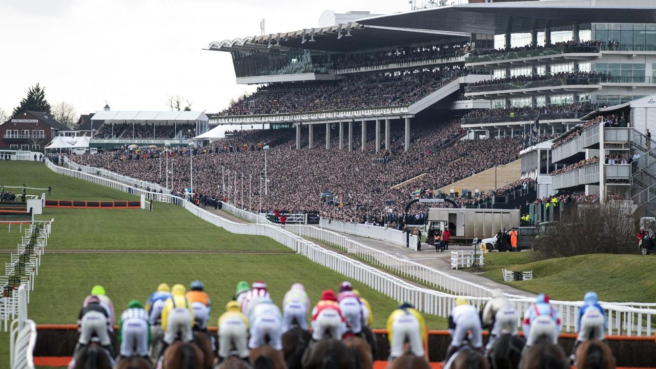 Cheltenham Races