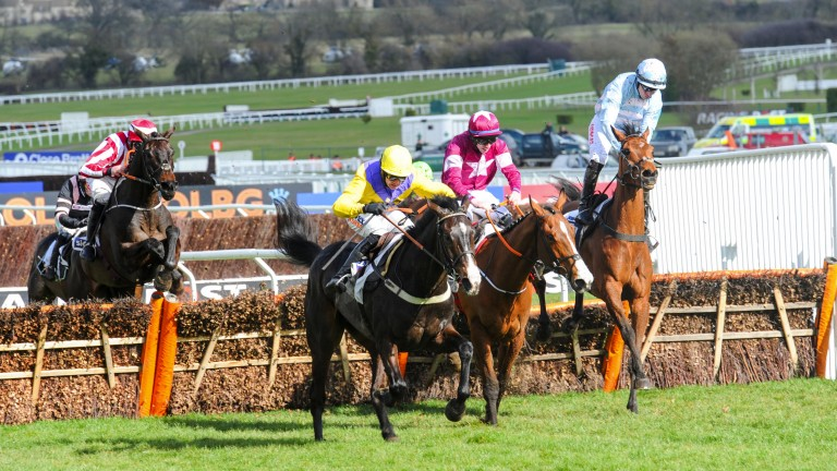 Fight to the finish: it's on in the Supreme Novices' as Kalashnikov (yellow silks) and Mengli Khan lock horns up the hill. Summerville Boy makes a hash of the last with Noel Fehily pushed up the saddle, but the pair still had time to produce a storming fini