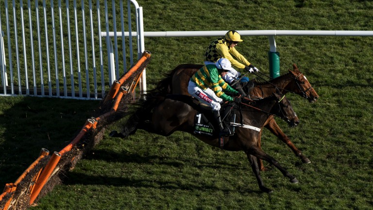 What a thriller: reigning champ Buveur D'Air has a fight on his hands as young gun Melon (far side) eyeballs him at the last in the Champion Hurdle
