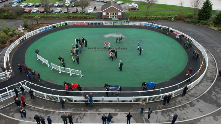 Wolverhampton: host Arabian racing on Sunday