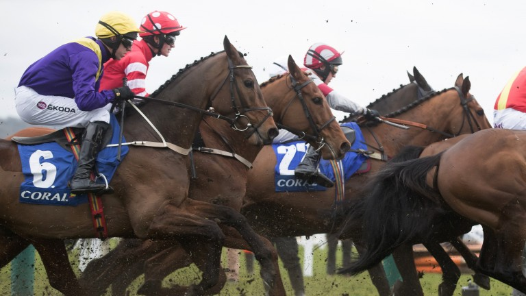 Travelling well: the Willie Mullins-trained Bleu Berry, the mount of Mark Walsh, replacing an injured Ruby Walsh, cruises into contention on the way to victory in the Coral Cup
